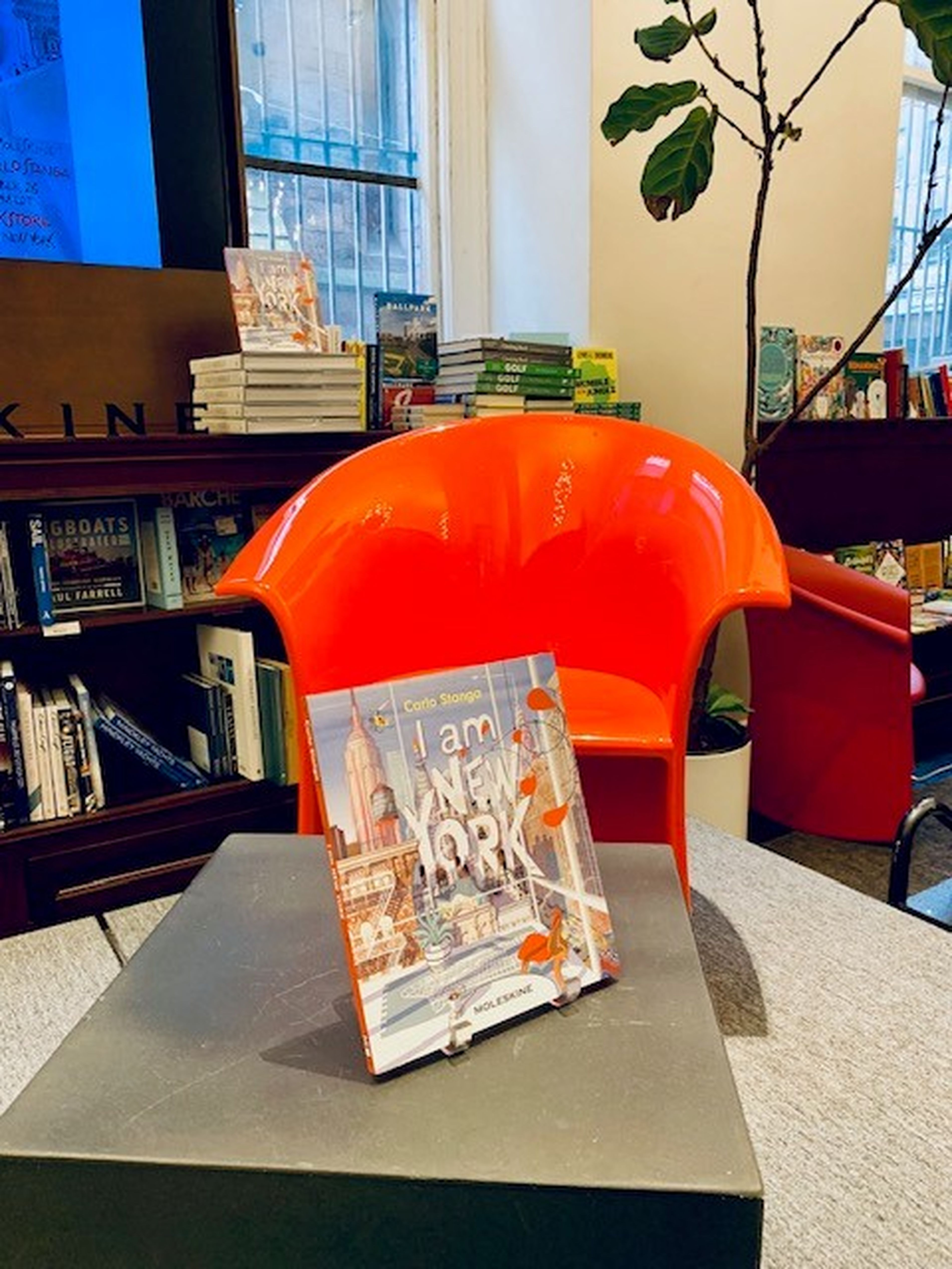 I AM NEW YORK AT RIZZOLI BOOKSTORE